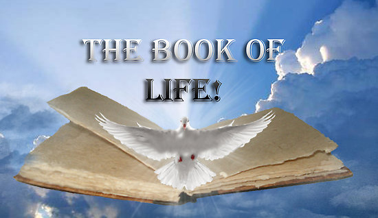 Image result for God's book of life